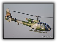 Gazelle AH.1 AAC XX371 on 12 February 2008_4