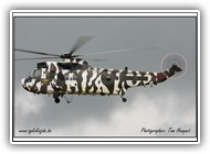 Sea King HC.4 RN ZF115 R_1